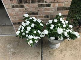 More patio flower arrangements