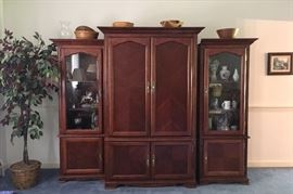 Wall Cabinet Entertainment Center
