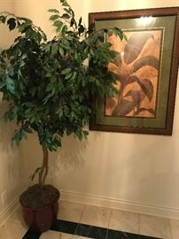 1 of 2  artificial Ficus trees, framed tropical print