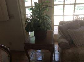Wood end table, faux plant