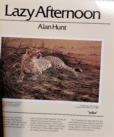 Lazy Afternoon by Alan Hunt