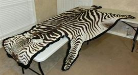 Full Zebra hide