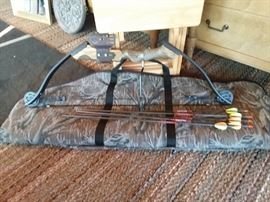 Right Hand Compound Bow, Arrows & Soft Side Bag