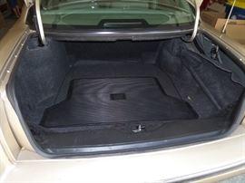 huge trunk