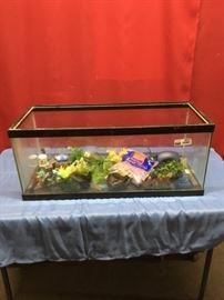 Aquarium and Stuff