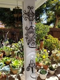 Garden Ironware and Succulents