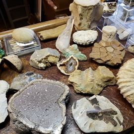 crystals, rocks, and fossils