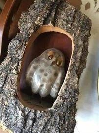 Cutest little owl in a tree.