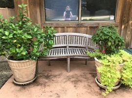 Chic Teak one of two bench & plants