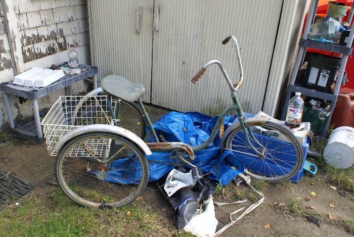 Adult Tricycle Bike Bicycle