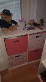 Storage Cabinet with Bins