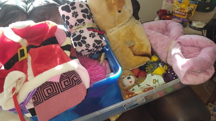 Doggie Clothes, Toys, Accessories & Bedding