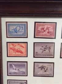 some of the older duck stamps framed with the Don Edwards print