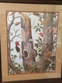 Don Edwards woodpeckers print