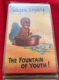 Water Sports The Fountain of Youth Postcard