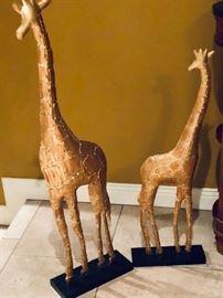 standing Giraffes