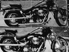 Harley Davidson 1995  Soft Tail 50th Anniversary 13,000 miles