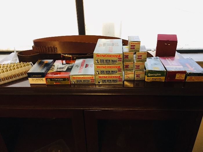Assorted Gun Ammunition