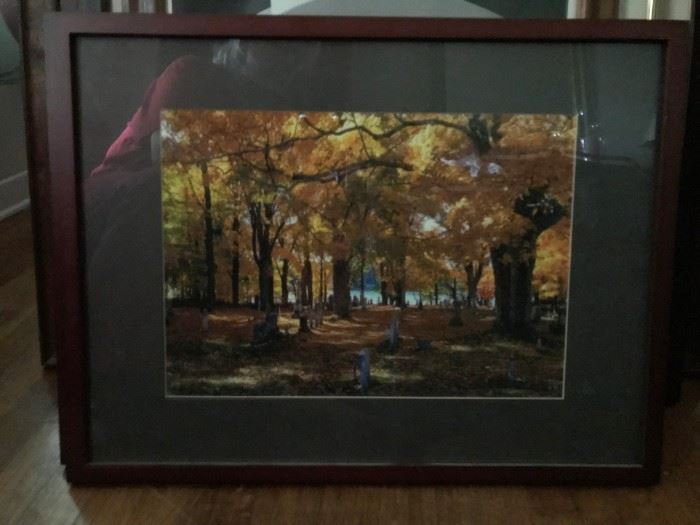 Matted and Framed Photo