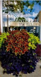 City Antiques Estate Sales