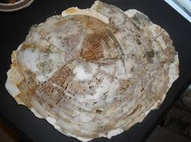 """****On the MAIN floor *****Approx. 15"""" round polished petrified wood"""
