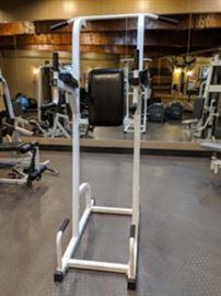 ParaBody Serious Steel Vertical Knee Raise Machine