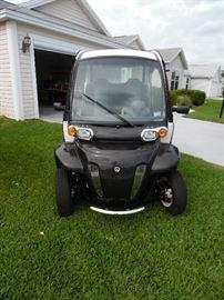 2010 GEM Golf Cart, street legal