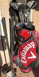 Callaway Golf Bag  Autographed by Alice Cooper
