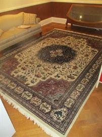 9 x 12 100% wool Pakistan rug