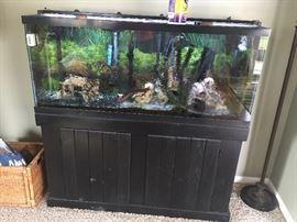 2 year old 55 gallon aquarium on stand