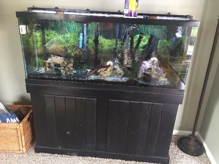 2 year old 55 gallon aquarium on stand