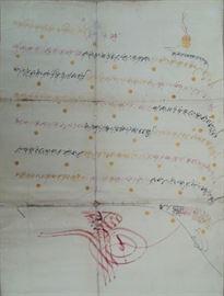 Illustrated Document