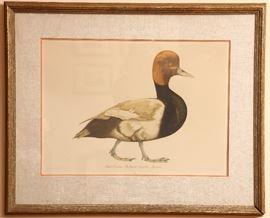 Charming bird print.