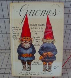 Gnomes Book