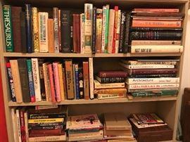 Bookshelf (vignette)