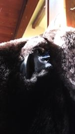 Sheared beaver? full lenth fur coat.  Slight tear in shoulder