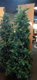 CHRISTMAS TREES 50% OFF