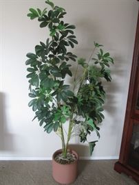 Potted Floor Tree