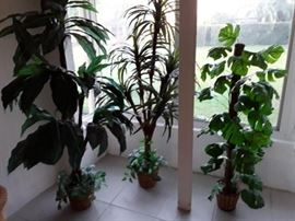 3 large artificial plants in baskets