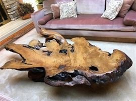 Monumental Cypress tree coffee table purchased from a Carmel, California gallery.  Measures approximately 84 inches long by 39 inches wide, by 20 inches tall.