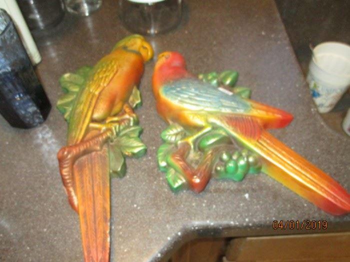 large chalk parrots