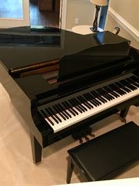 Yahama Grand Player Piano- Cleaned and Tuned this week!  $6,500