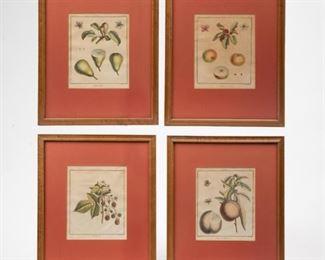 Lot 99: Four Antique Hand-Colored Fruit Engravings