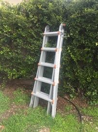 Fruit tree ladder
