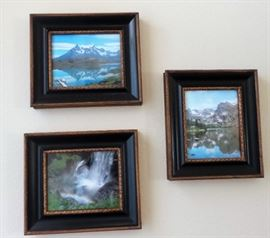 Framed nature photos and prints