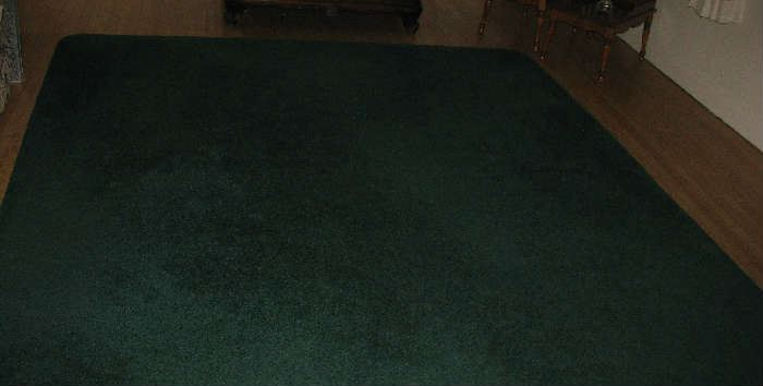 Area rug approx. 12 x 9