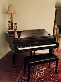 Baldwin baby grand piano .  Number on the soundboard is 13889.
