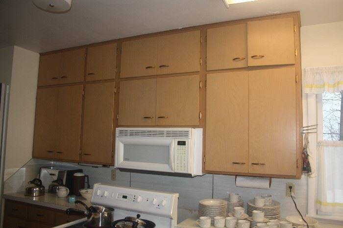 KICHEN CABINETS AND BUILT IN MICROWAVE