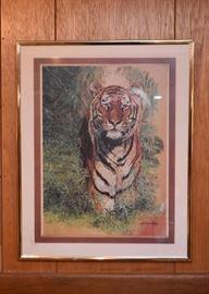 Framed Prints - Tiger