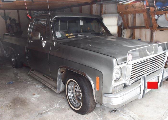 1976 Chevy Pick Up Truck (it runs!)